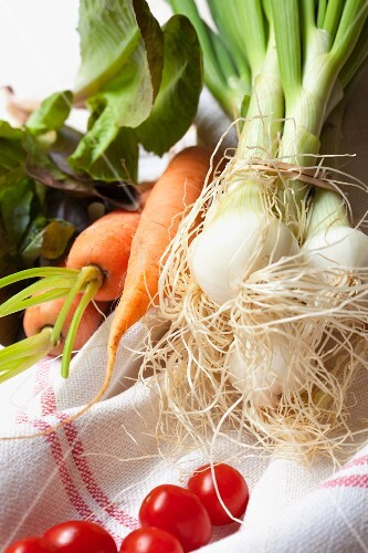 An arrangement of vegetables featuring spring onions, carrots, tomatoes and lettuce