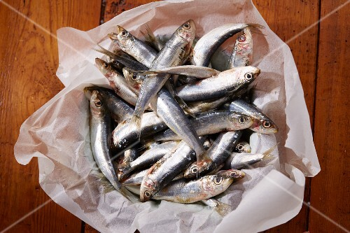 Fresh sardines on a piece of paper