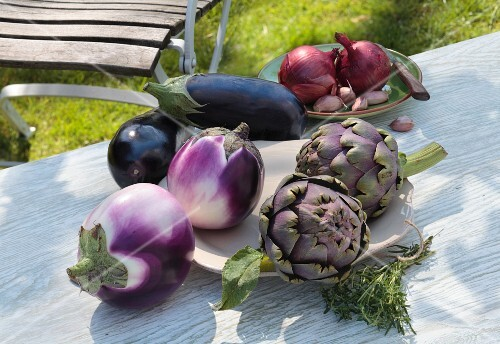 An arrangement of vegetables, artichokes, onions and garlic on a garden table