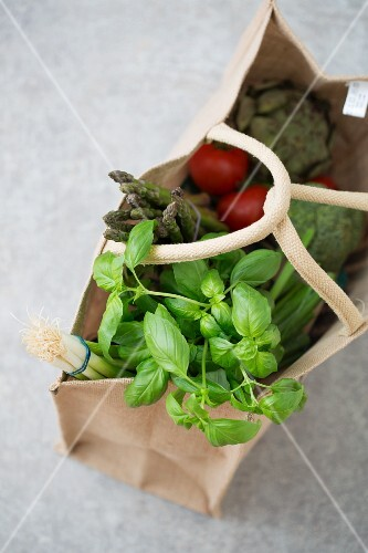 Fresh vegetables and basil in a shopping bag