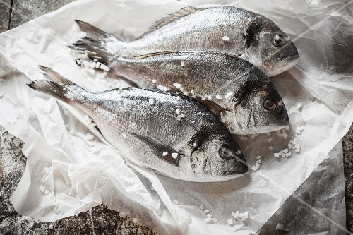 Three seabream on a piece of white paper with salt crystals