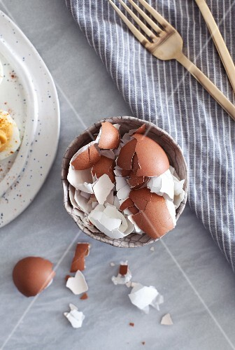 A bowl of eggshells