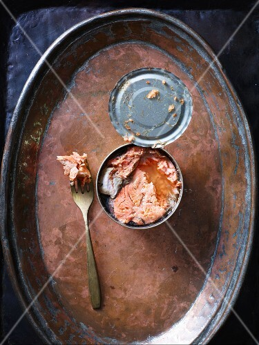 Tinned salmon on a copper plate