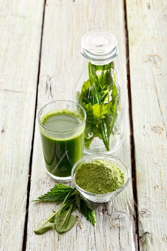 A green smoothie made from stinging nettles, wheatgrass and dandelion