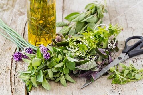 Fresh herbs for homemade herbal oil