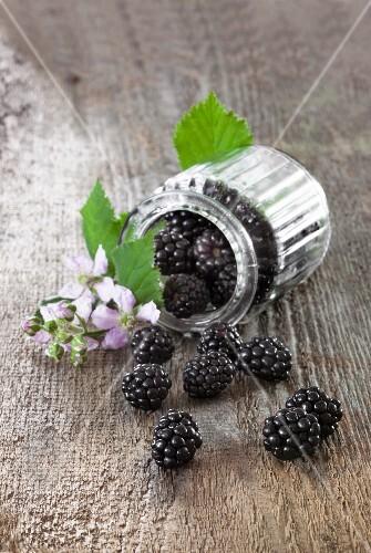 Blackberries in an overturned jar