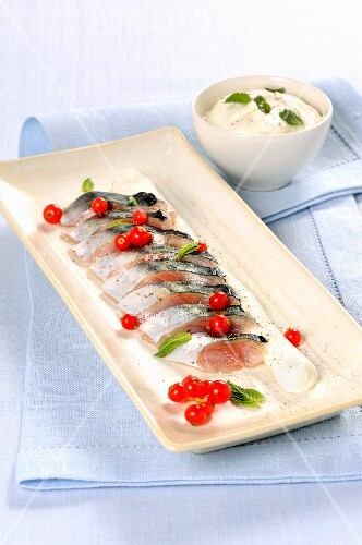 Marinated mackerel with redcurrants
