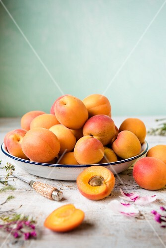 Fresh apricots in an enamel bowl next to a knife