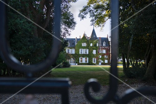 Chateau Lascombes, vineyard in Bordeaux, France