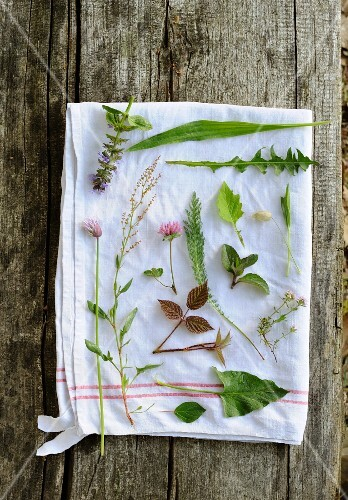 Wild herbs on a white tea towel
