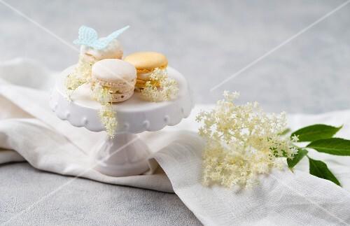 Macaroons with elderflower cream