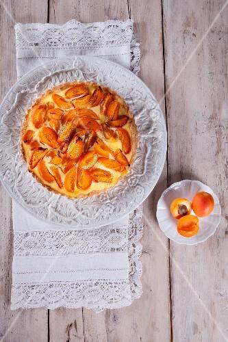 Caramelised apricot pudding tart