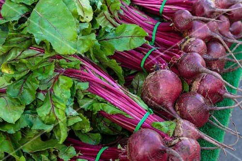 Bunches of beetroot at a market in San Diego, USA