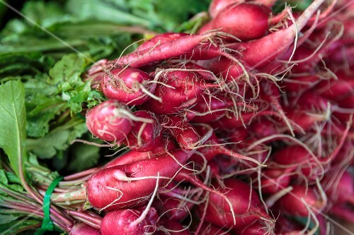 Bunches of radishes at a market in San Diego, USA