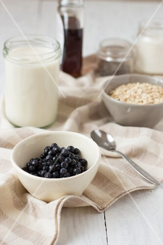 Ingredients of pudding with oats and blueberries