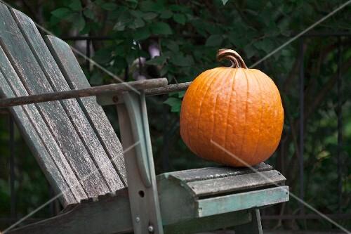 A pumpkin on a wooden chair in a garden