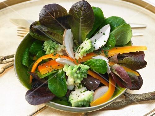 Marinated Romanesco broccoli on lamb's lettuce