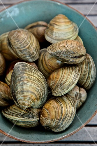 A bowl of fresh mussels