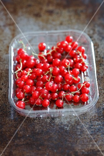 Fresh redcurrants in a plastic punnet