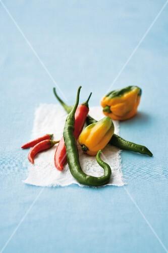 Various chillis