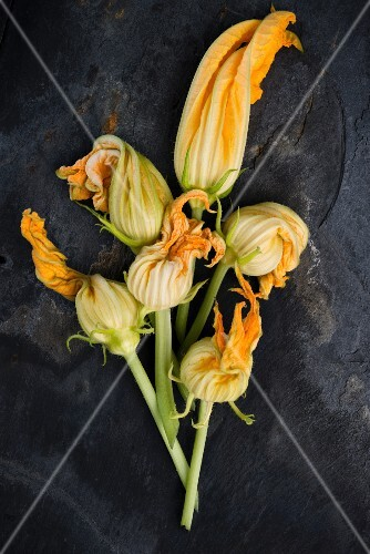 Courgette flowers on a black surface