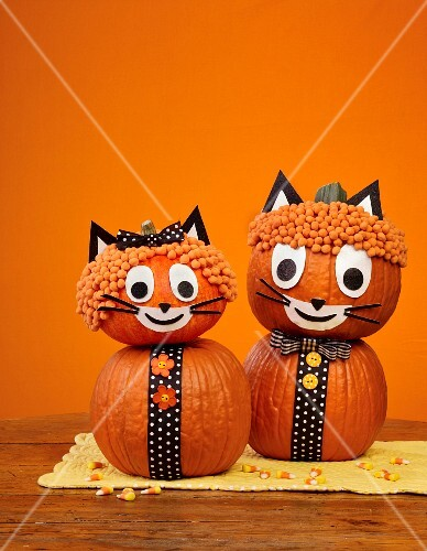 Halloween pumpkin cats