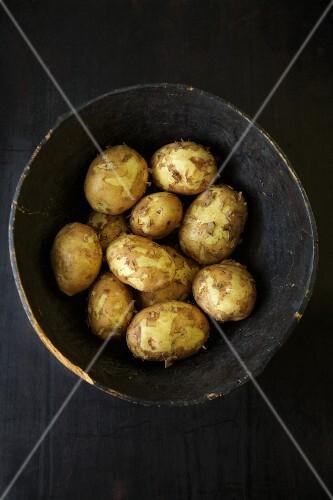 A bowl of Yukon Gold potatoes