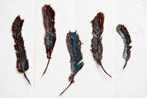 Five chocolate feathers