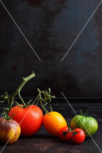 Various types of tomatoes on a black surface