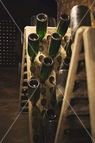 Botles of cava being stored at the Juve & Camps winery (in El Penedes, Spain)