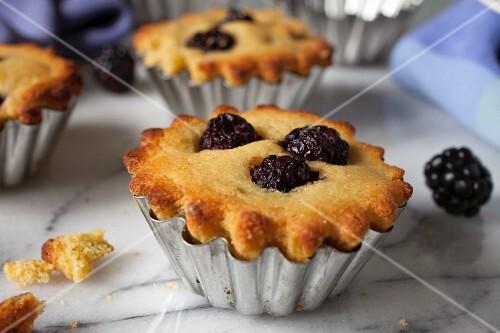 Blackberry corn muffins in mini brioche tins