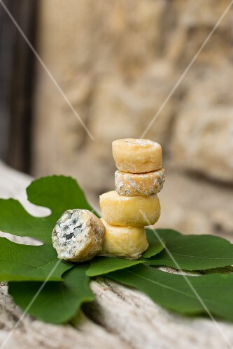 Saint Marcellin (French soft cheese)
