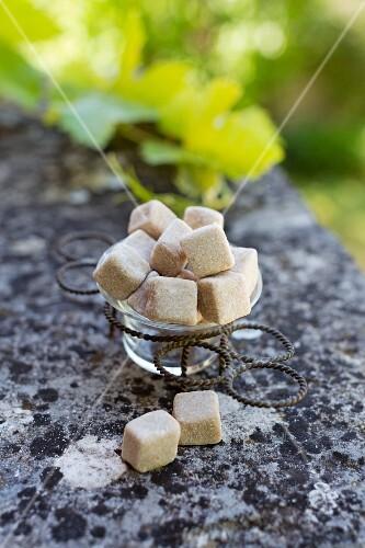Pâte de Lichen (French confectionery)