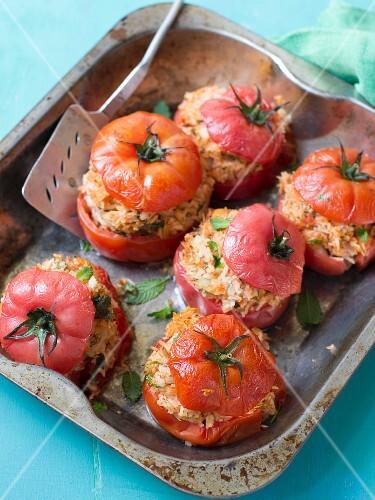 Tomaten, gefüllt mit Reis und Kräutern
