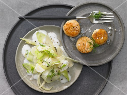 Scallops with fennel and onion