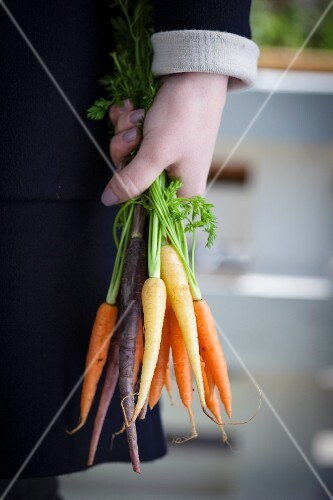 A person holding a bunch of mini carrots in their hand