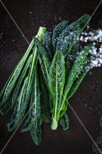 Black kale with droplets of water