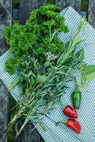 Curly-leaf parsley, rosemary, thyme and red chillis on a checkered cloth