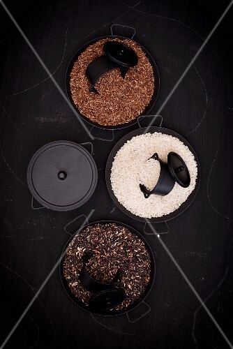 Various types of rice in pans (seen from above)