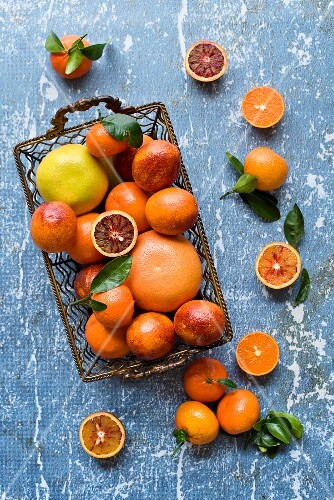 Blood oranges, grapefruits, oranges and tangerines in s wire basket