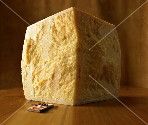 A mousetrap in front of a block of cheese