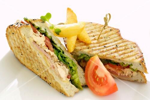 Sandwiches with chicken, tuna, tomato and lettuce (close-up)