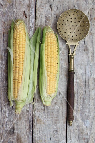 Two corn on the cob with a sieve spoon on a wooden surface