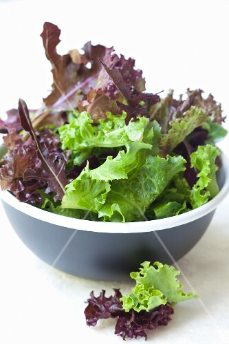 Mixed salad leaves in a bowl