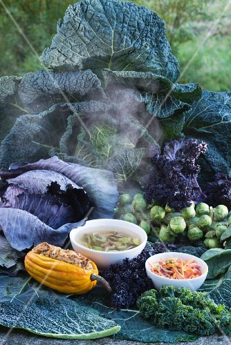 Assorted cabbage varieties and winter meals: stuffed pumpkin, leek & mushroon soup and colourful carrot salad