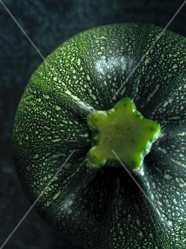 Runde Zucchini (Draufsicht)
