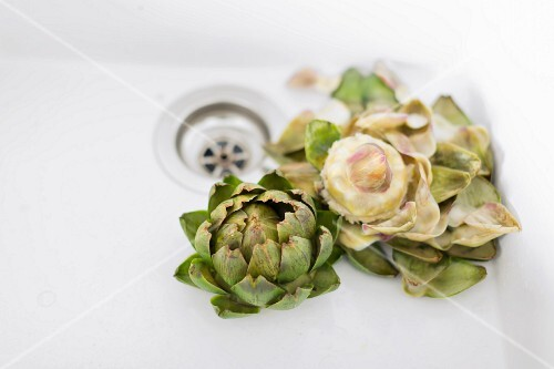 Two boiled artichokes (organic) in a ceramic sink