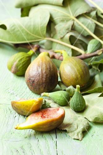 Fresh figs with a branch and leaves