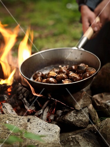 Chestnuts being roasted over a fire