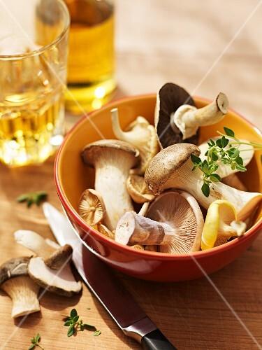 Fresh mushrooms in a ceramic bowl